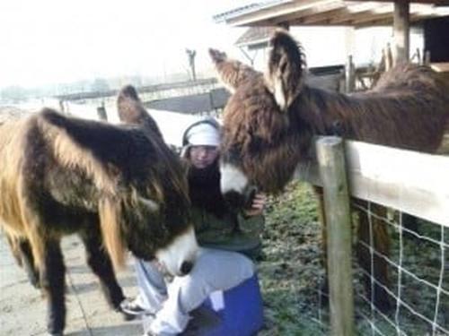 camilla-ezels